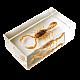 Σκορπιός της Μαντζουρίας  Τ1