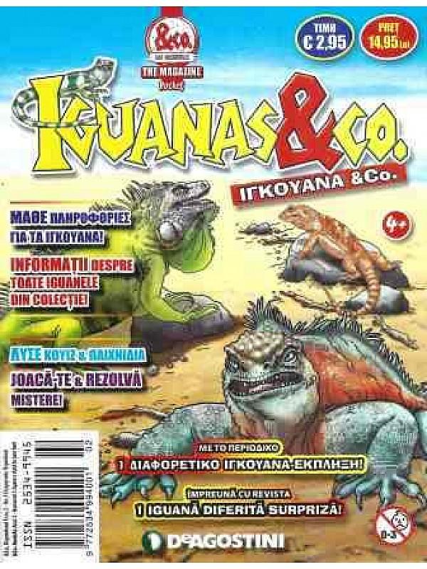 Iguanas & Co